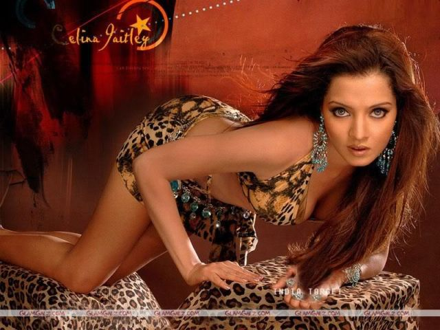 Click to Enlarge - Celina Jaitley - Walls